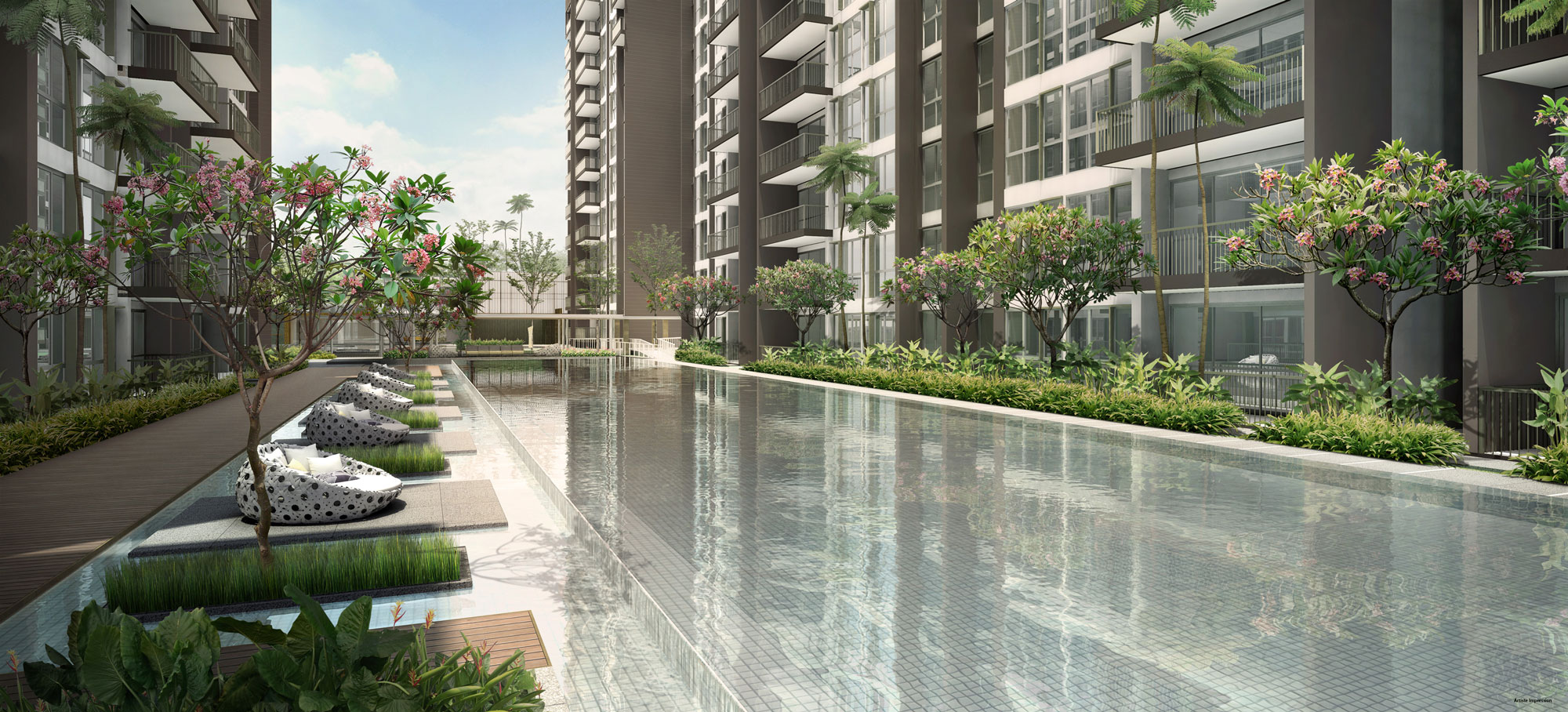 Bellewoods – Urban Forest 50m Infinity Pool
